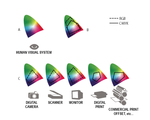 Colour Management: What is it important and why you need it